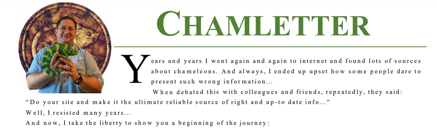 2020-02-10 13_23_58-chamletter_01.pdf.png