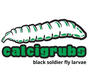 calcigrubs300b.jpg