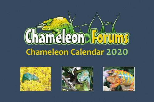 calendar2020ad2.jpg