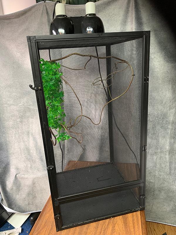 Chameleon Kit cage.jpg