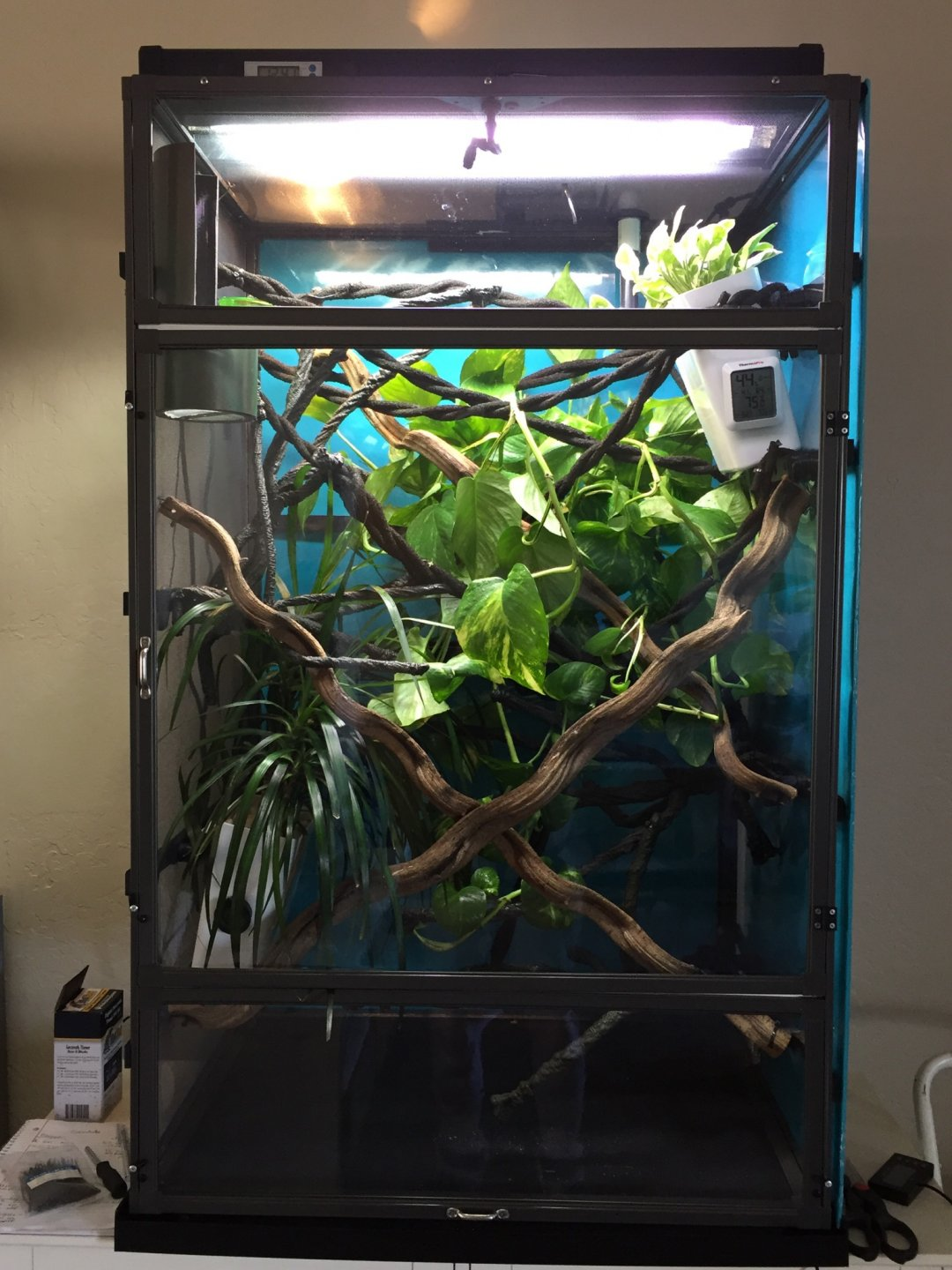 Front cage2.jpg