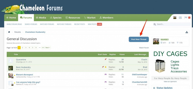 General Discussion | Chameleon Forums-1.jpg