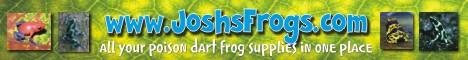 joshs_frogs.jpg