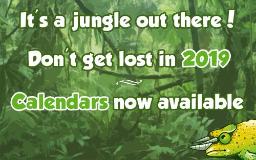 jungle2019.jpg