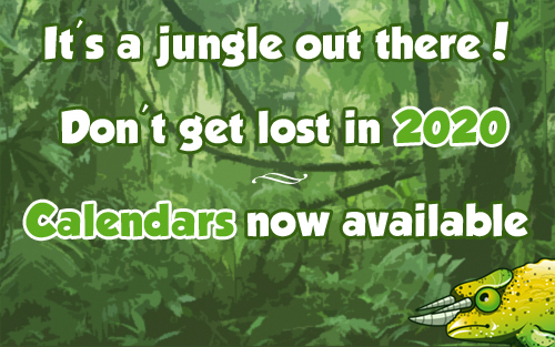 jungle2020.jpg
