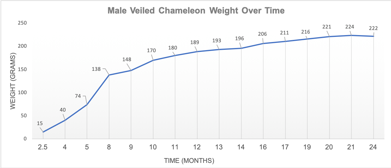 Male veiled weight over time.png