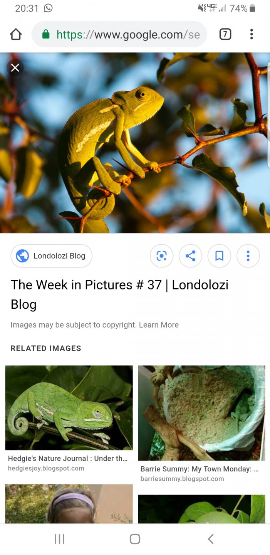 Screenshot_20190504-203144_Chrome.jpg