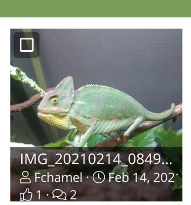 Screenshot_20210214-155220.png