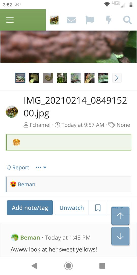 Screenshot_20210214-155252.png