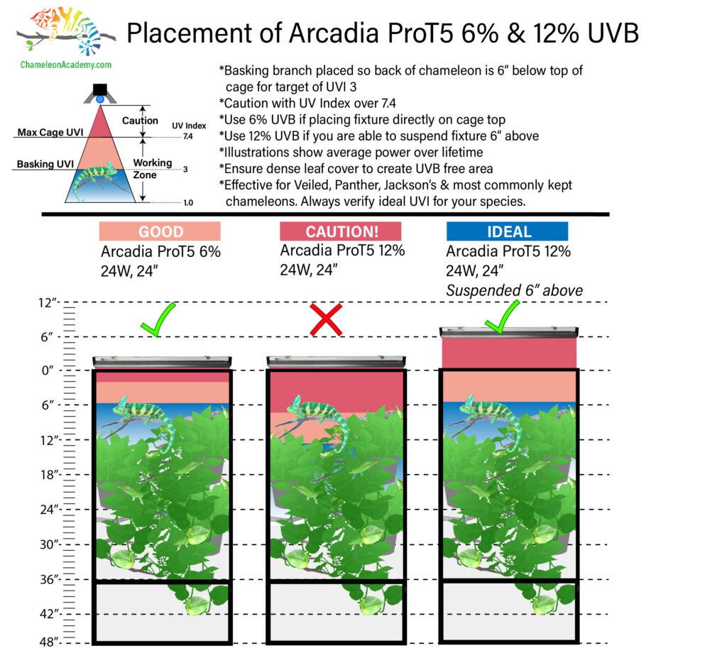 UVB-2x2x4-UVB-Guide-1024x920.jpg