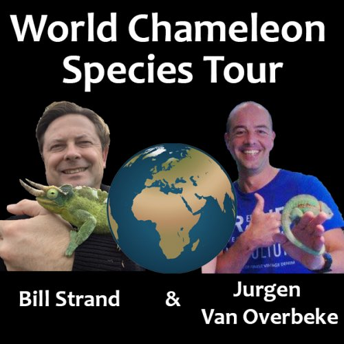World Chameleon Species Tour begins!