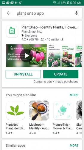 Screenshot_20190512-050028_Google Play Store.jpg