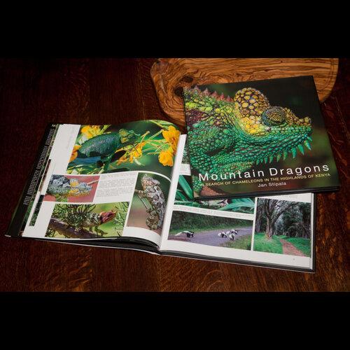 Mountain Dragons book.jpg