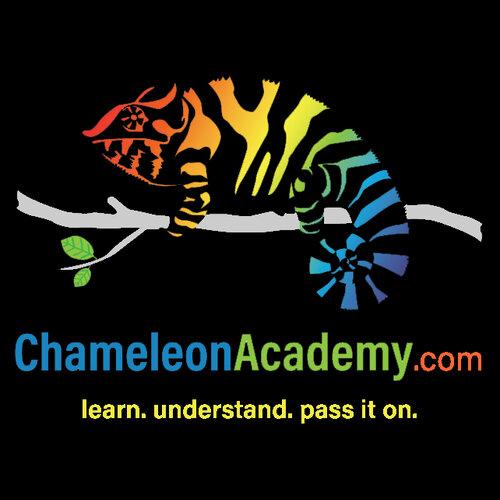 ChameleonAcademyLogo Black Yellow.jpg