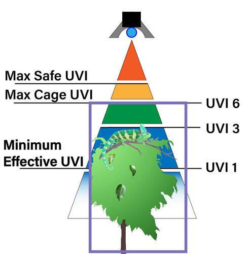 UVB Zones with cage rev B.jpg