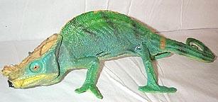 chameleon-parsons.jpg