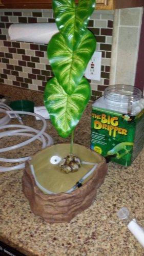 Exo Terra Dripper Plant Drip Watering System: Exoterra Dripper Plant.