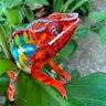 ColorificChameleons