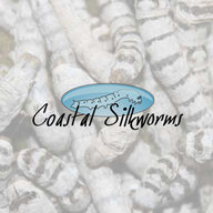 Coastal Silkworms