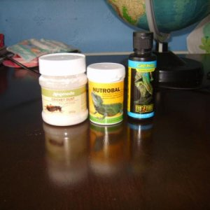 supplements....cricket dust 3 times weekly....Nutrobal 2 times a month