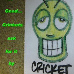 Cricket Crack