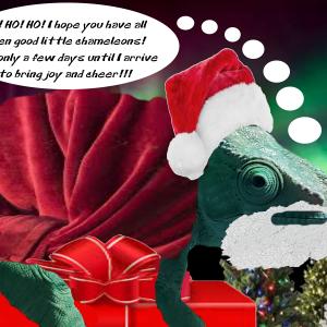 Santa Says.