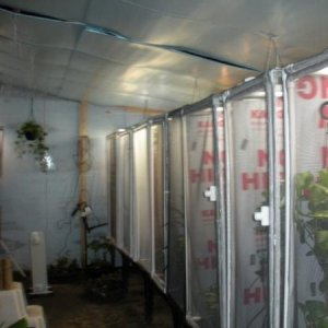 This started as a greenhouse it is now the Chammy Room 8' x 20' and now I need to add on