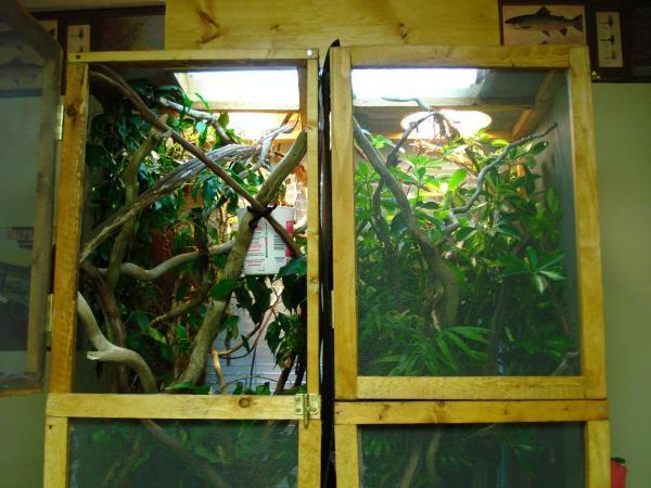 Enclosures.JPG