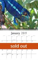 chameleon_calendar19out.jpg