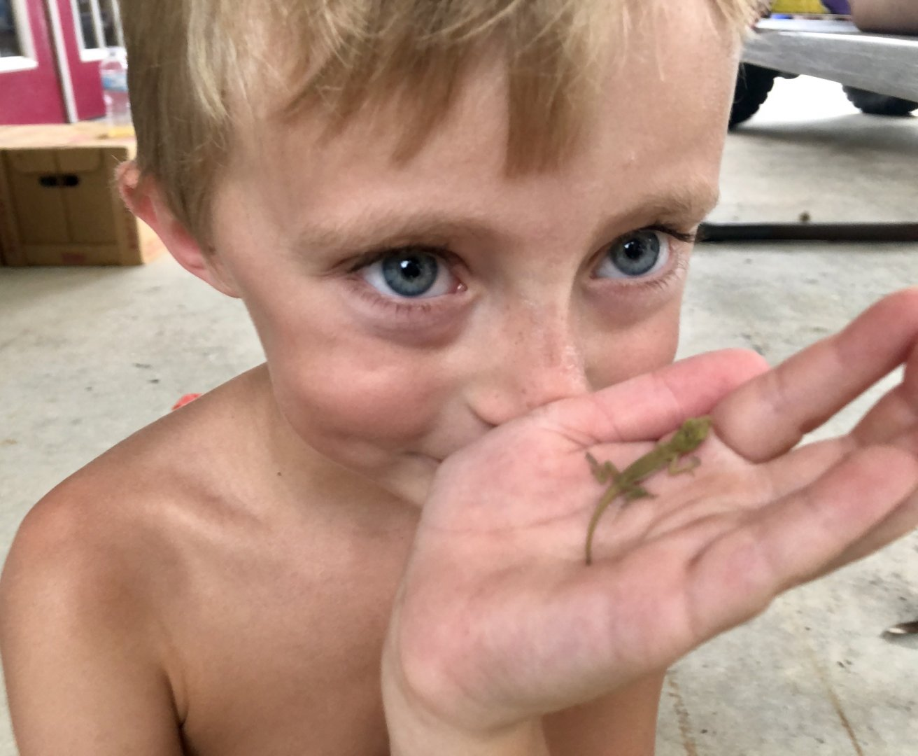 Ty and his baby green anole 6/25/19