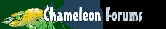 Chameleon Forums
